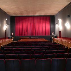La salle de cinéma : 290 places - écran de 8 mètres - son Dolby Stéréo